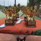 Πανελλήνιο Πρωτάθλημα Νέων Ανδρών – Νέων Γυναικών 18 –  Ε.Φ.Ο.Α. 2018 – Προκήρυξη – Sign in- Draws – Πρόγραμμα αγώνων